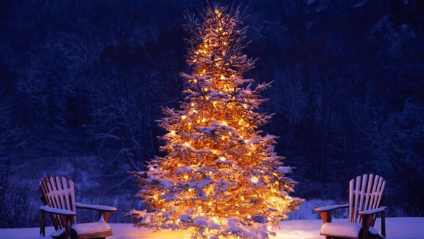 best 6 places in India to celebrate Christmas - Manali