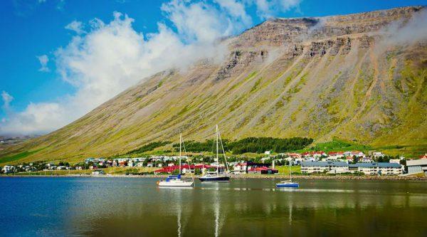 Hofn Iceland Road Trip
