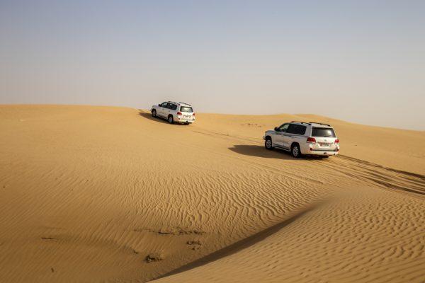 Incredible Rajasthan (The Rajasthan Road Trip)