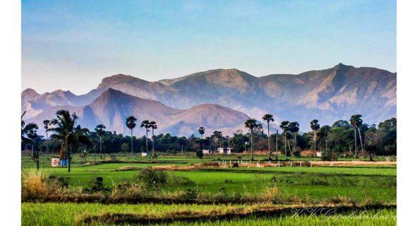 Coimbatore to Palakkad
