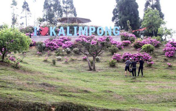 kolkata to kalimpong hill station by self drive car