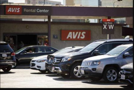 avis car rent