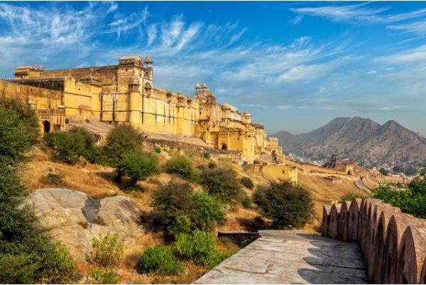avis in Rajasthan