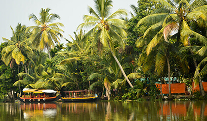 Hire a Cab from Kochi and Visit Alleppey
